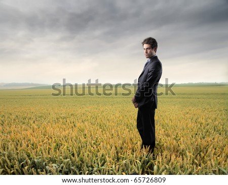 Businessman standing on a wheat field