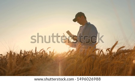 businessman with a tablet studies the wheat crop in field. Farmer working with tablet in wheat field, in the sunset light. businessman is studying income in agriculture. agriculture concept.