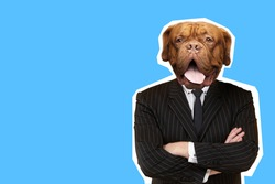 Businessman with dog face stands with his arms crossed. Blue art business collage. Art business illustration with place for inscription. Art business man dog head. Portrait of trendy magazine style
