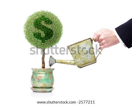 Businessman with metal water can watering a pot tree with US dollar symbol over white background