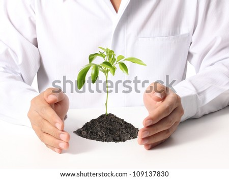 businessmen holding a plant on a white background
