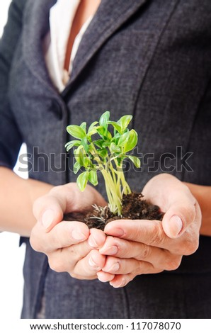 Businesswoman with seedling on white - stock photo