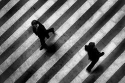 Busy crosswalk scene on the stripped floor