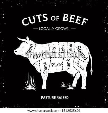 Butcher cow poster. White beef diagram, cow silhouette vintage logo, restaurant menu beef cut template. butcher beef illustration guide diagram
