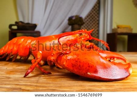 Butchering boiled lobster, cooked lobster, red lobster. #1546769699