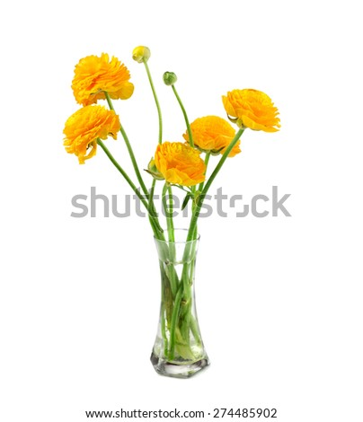 Ranunculus Flower In Vase Ez Canvas