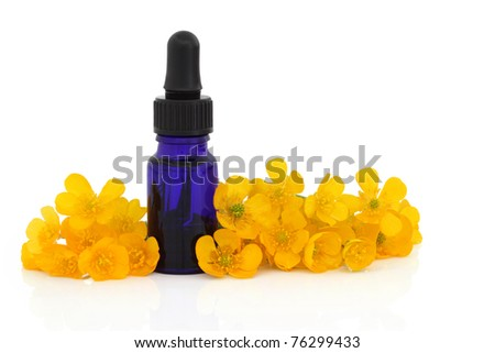 Buttercup flowers with essential oil  blue glass dropper bottle isolated over white background. Used in homeopathic medicine for healing blisters. Ranuculus bulbosus.