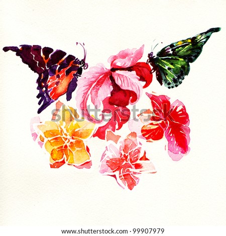 Butterflies and Flowers. watercolor painting on white background