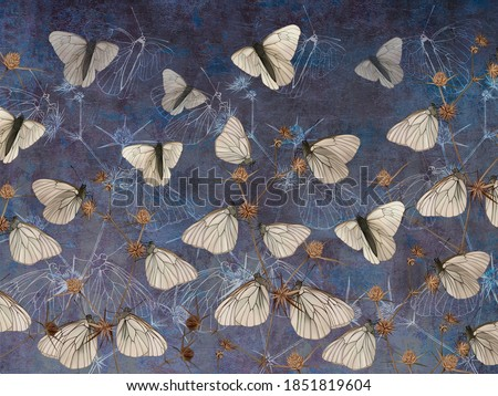 Butterflies on thorns painted on the dark blue grunge wall. Beautiful design for postcard, picture, mural, wallpaper, photo wallpaper.