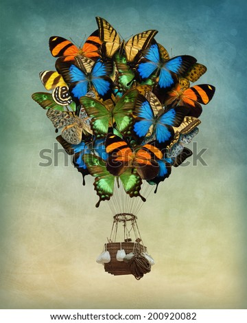butterfly hot air balloon high...