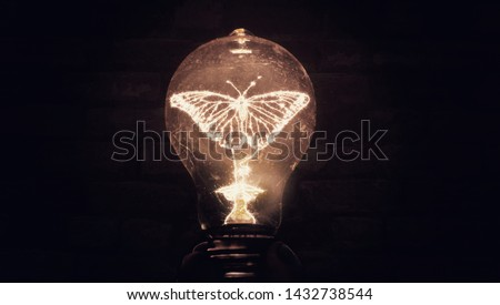 Butterfly Illuminated Inside Filament Light bulb Conceptual Photo Art of New Ideas Transformation Invention Creativity  And Science #1432738544