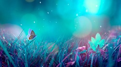 Butterfly in the grass on a meadow at night in the shining moonlight on nature in blue and purple tones, macro. Fabulous magical artistic image of a dream, copy space.