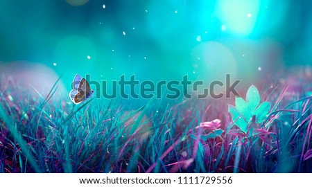Butterfly in the grass on a meadow at night in the shining moonlight on nature in blue and purple tones, macro. Fabulous magical artistic image of a dream, copy space. #1111729556