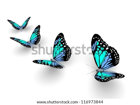 Butterfly isolated on white. 3d illustration.