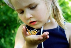 Butterfly sitting on the hand of a child. Child with a butterfly. Butterfly painted lady on the hand of a little girl. Selective focus.