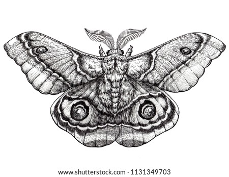 Butterfly tattoo art. Dotwork tattoo. Antherina suraka. Madagascar bullseye moth. Mystical symbol of freedom, nature, beauty, perfection ストックフォト ©