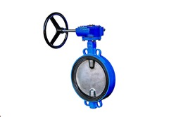 butterfly valve isolated