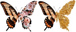 Butterfly with a wing of flowers and baroque