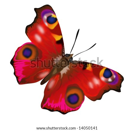 Butterfly Coloring Pages - First-School Preschool Activities and