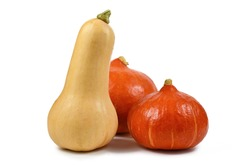 Butternut squash and 'Red Kuri' squash, also called 'Hokkaido' squash, isolated on white background