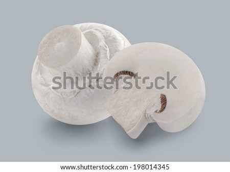 Button mushroom champignons isolated on grey background for package design #198014345