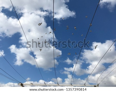 Buy Sky Blue Very Cloudy White Amazing Amazing Amazing Contrast Background