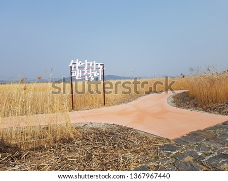 Buyeo, Korea - Eulalia pictures. Chinese Siver grass Korea word Meaning : It's okay to take a break.