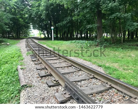 Buying iron rail railroad track thin long old nostalgia wonderful different angles perspectives background image of railroad crossing between green trees. #1463622779