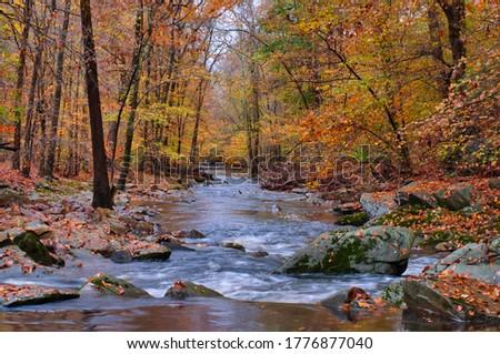 Bynum Run Creek in Bel Air Maryland  Сток-фото ©