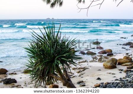 Byron Bay beach #1362394220