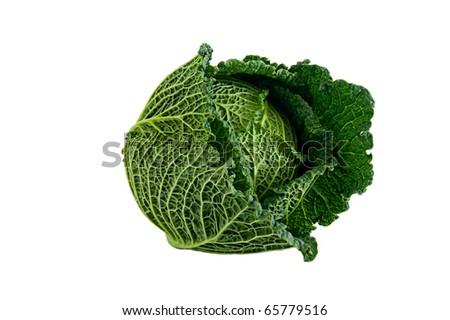 Cabbage Stock foto ©
