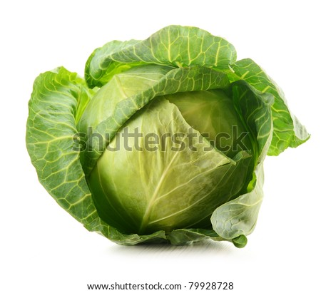 Cabbage isolated on white - stock photo