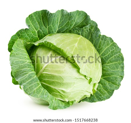cabbage isolated on white background, clipping path, full depth of field Сток-фото ©