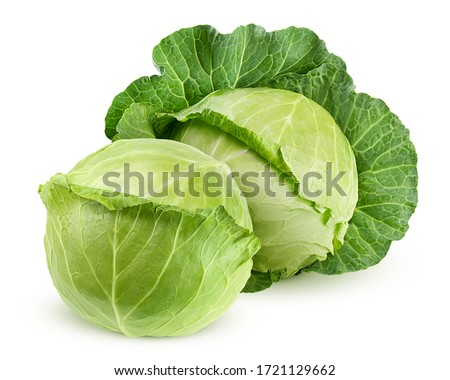 cabbage isolated on white background, clipping path, full depth of field Photo stock ©