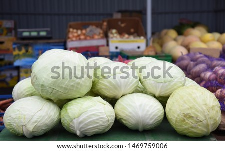 Cabbage piled on the table in a pile for sale,in the background boxes of vegetables.