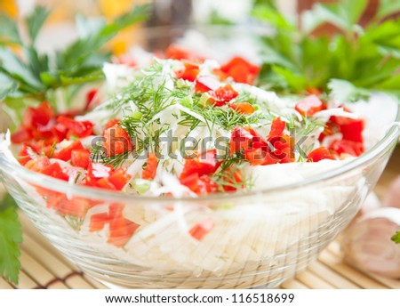 cabbage salad with green and red pepper - stock photo