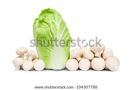 cabbage with agarics a horizontal picture