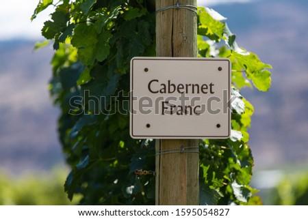 Cabernet Franc wine grape variety sign on wooden pole selective focus, vineyard varieties signs, Okanagan valley wine region British Columbia, Canada