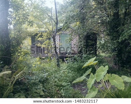 Cabin ien the Woods (1) #1483232117