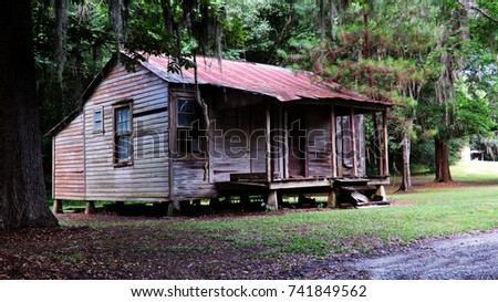 Cabin in the woods #741849562