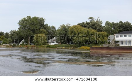 Cabins and trees on a bay #491684188