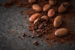 cacao beans and cacao powder on dark background
