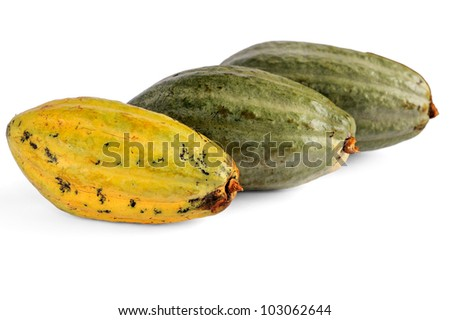 cacao fruits isolated against white background. selective focus.