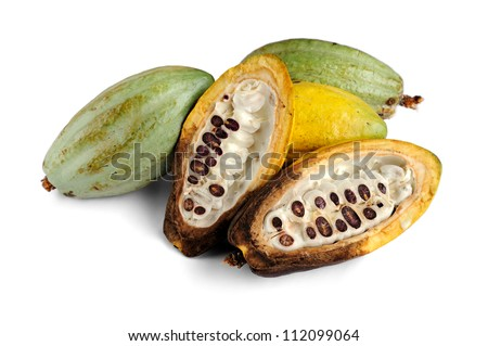 Cacao fruits isolated on white background, selective focus.