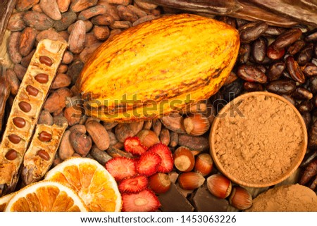 cacao pods, carob pods and dried fruits on wooden background #1453063226