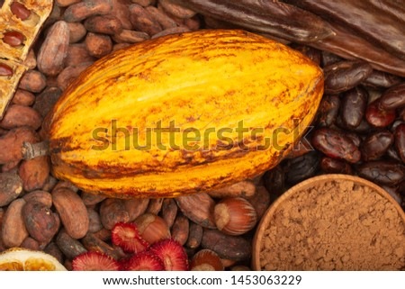 cacao pods, carob pods and dried fruits on wooden background #1453063229
