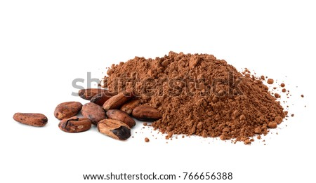 Cacao powder and cocoa beans isolated on white background. Macro with full dept of field