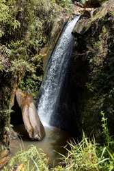 Cachoeira dos Pelados [waterfall of the naked] in the Andorinhas [swallows] park in Ouro Preto, Brazil with water dropping into a pond with large rock on a bright sunny day