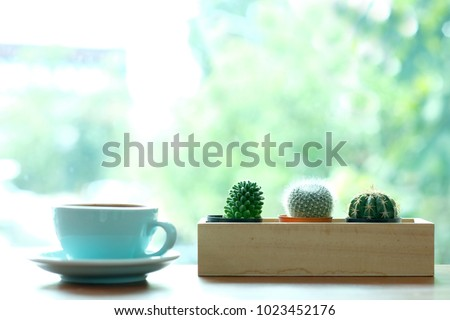 cactus and green coffee cup on...