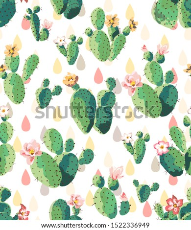 cactus background for phone computer